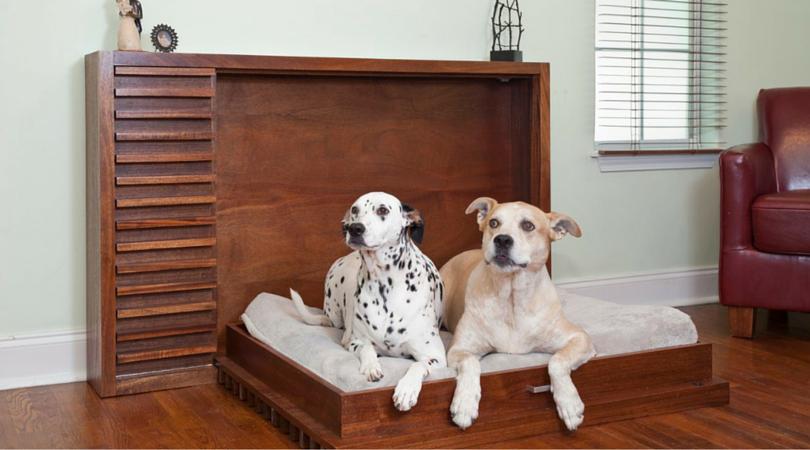 Как правильно подобрать спальное место для вашего домашнего питомца 2