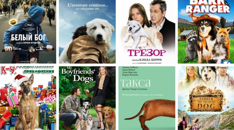 Фильмы про собак. Список