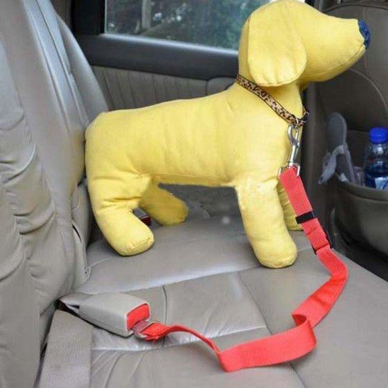 Автокресло для собак