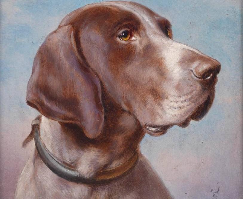carl-reichert-11809-kopek-portresi-813x667
