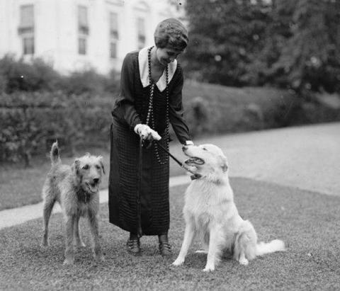 Жена президента Кулиджа с собаками
