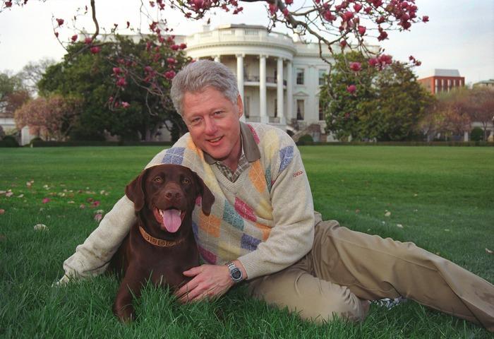 Собака Билла Клинтона