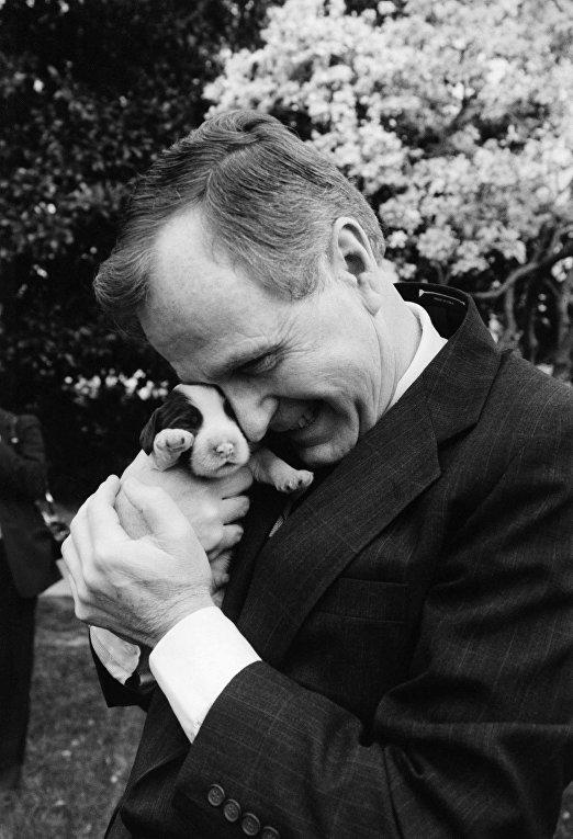 Джорж Буш старший и щенок спаниеля