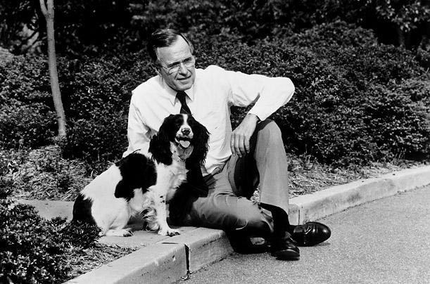 Собака Джоржа Буша старшего