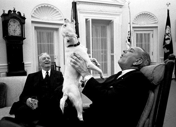 Президент США Линдон Джонсон и его собака Юки