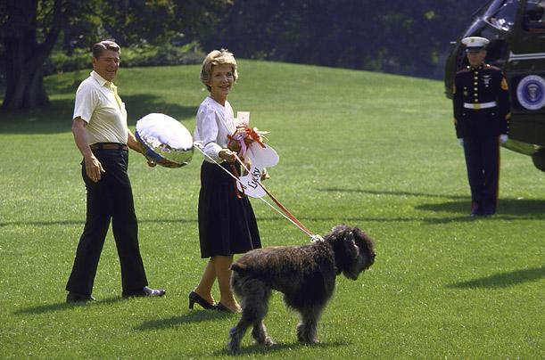 Собака президента США Рональда Рейгана