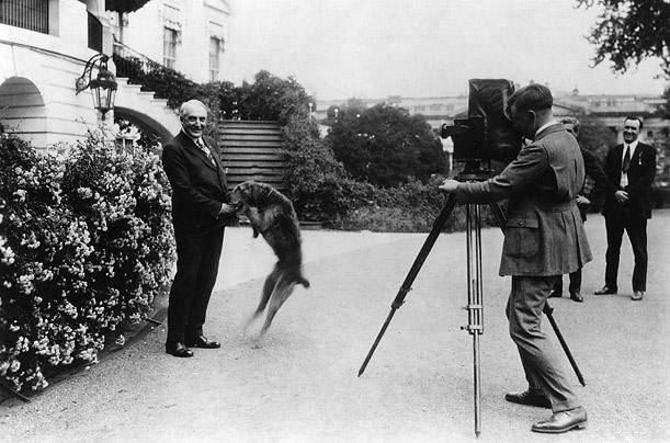 Уоррен Гамалиел Гардинг с собакой