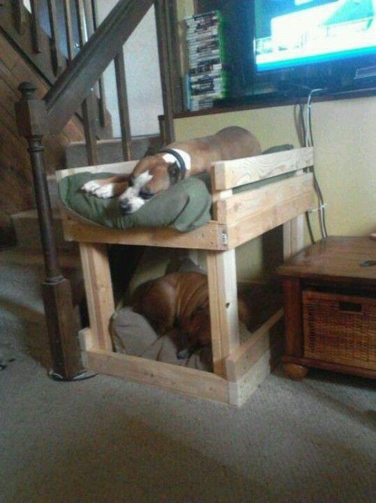Двухъярусная кровать для собаки
