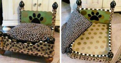 Кровать для собаки из старого стола