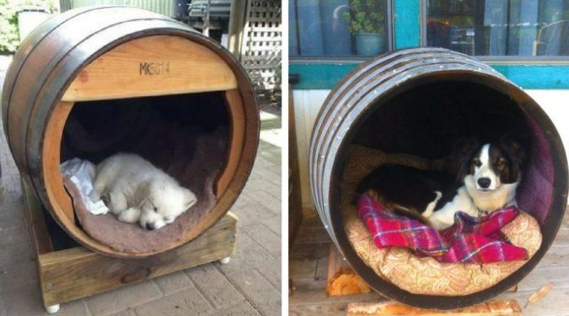 Будка для собаки из бочки
