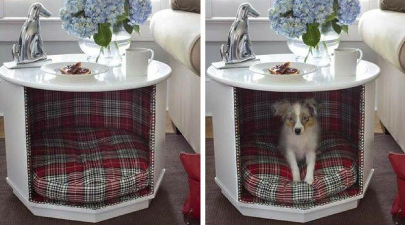 Домик для собаки из тумбы