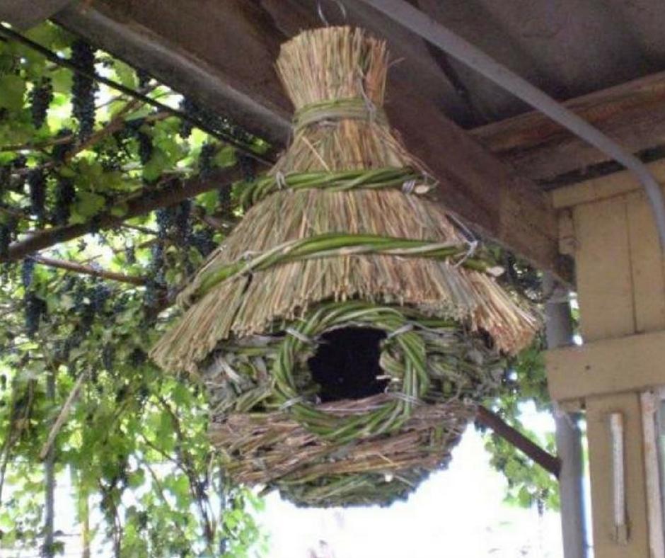 Гнездо для карелов своими руками фото 752