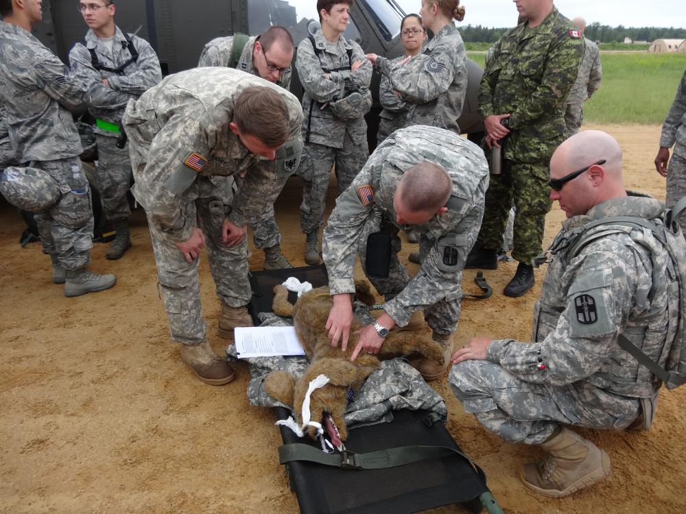 Обучение военных ветеринаров