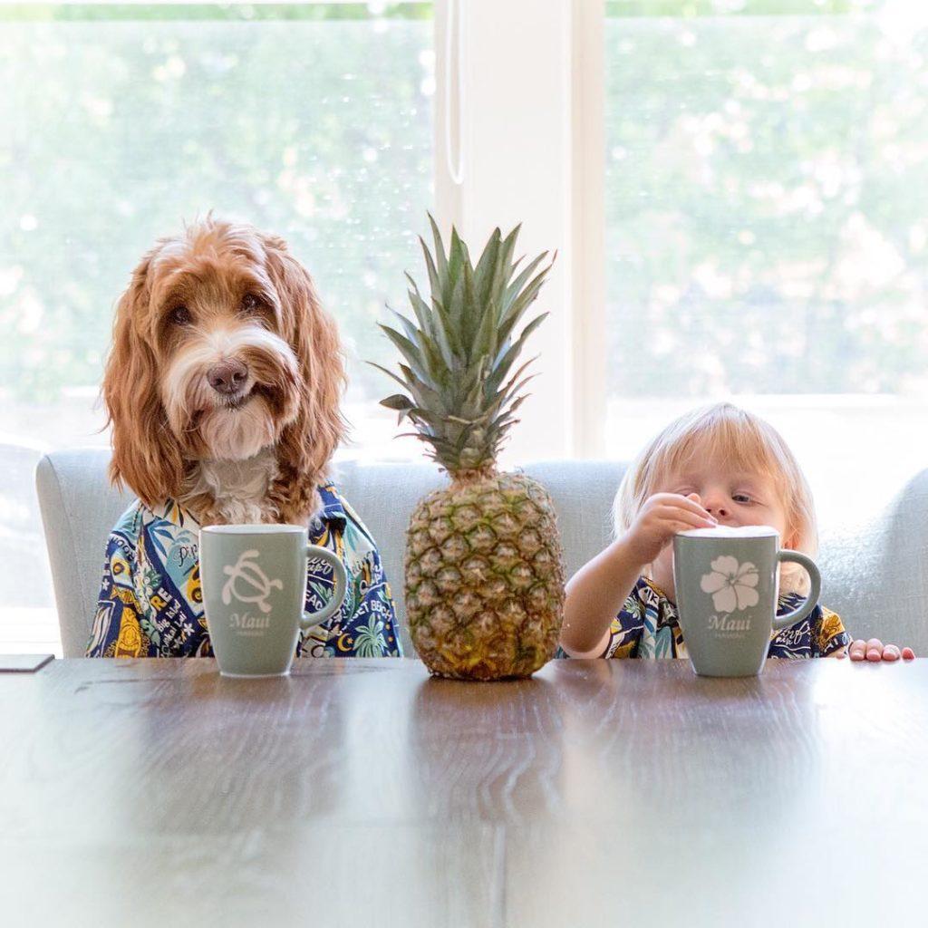 Внуки и собаки