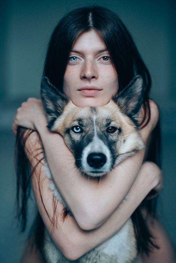 Собака с разными глазами