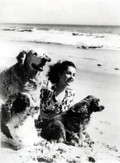 Элизабет Тейлор и собаки