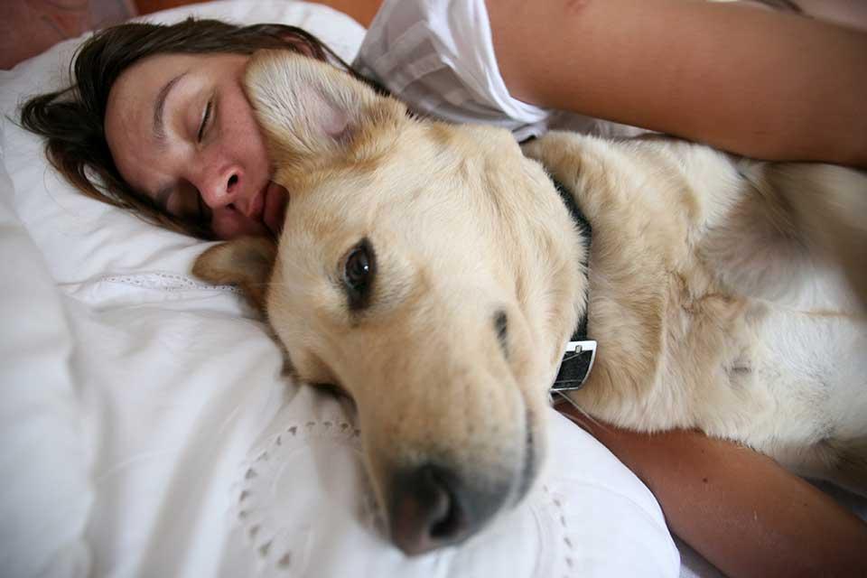 Собака спит с хозяином