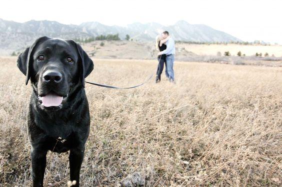 Романтическое фото с собакой