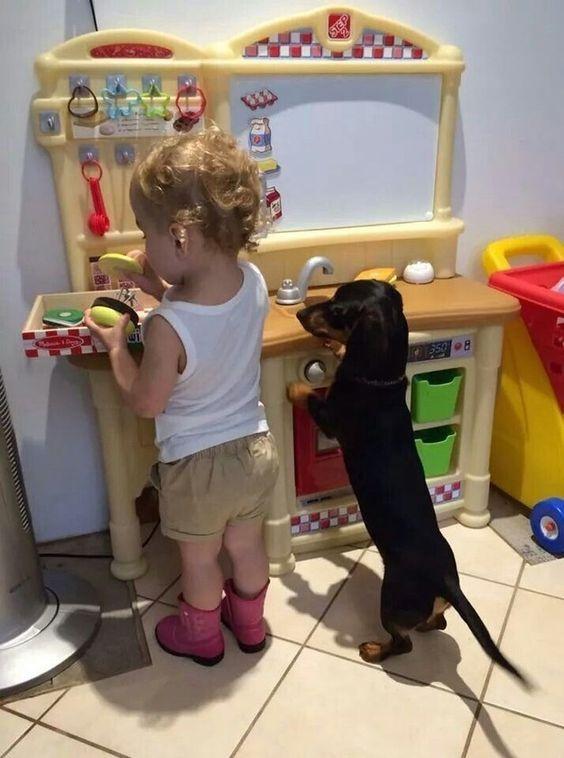 Такса и ребенок