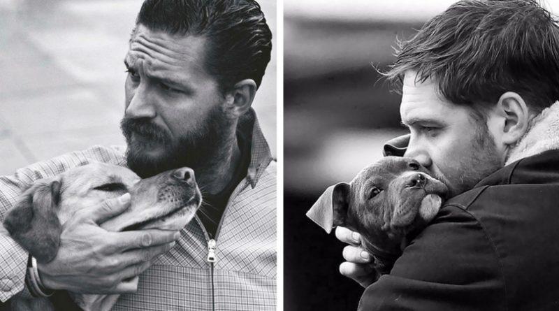 Том Харди и собаки