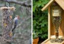 Кормушки для птиц из банок и бутылок: 35 лучших идей
