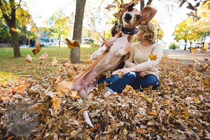 С собакой на свиданье