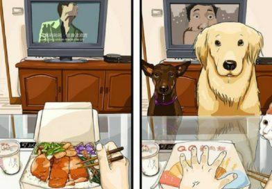 ДО и ПОСЛЕ того, как вы завели собаку