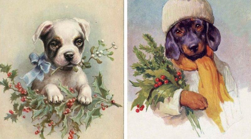 Винтажные открытки с собаками