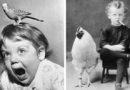 Дети и животные: любовь и курьезы в черно-белых фото