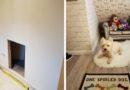Комната для собаки своими руками: фотоинструкция