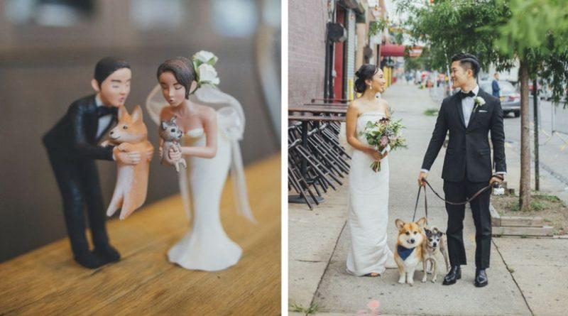 Собаки на свадьбе хозяев