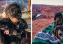 Щенки, спасенные в пустыне и путешествие в 30 000 миль