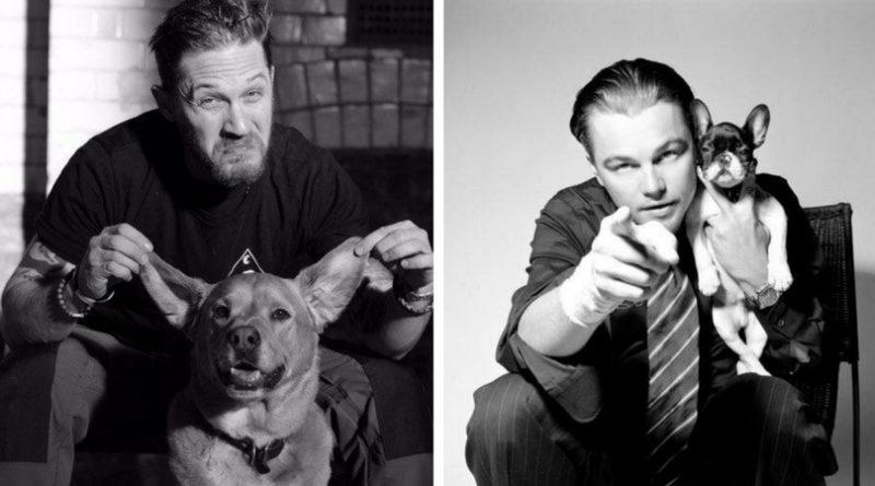 Собаки и знаменитости